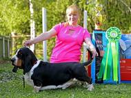 Apetit Citadela Bohemia - excellent 1, CAC, BOB, BIG 1, Best in show!
